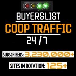 Buyers List Coop Traffic 24/7